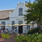 Winefarm in the winelands