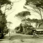 Main road,Wynberg, c1903