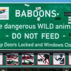 Warning of baboons near Muizenberg