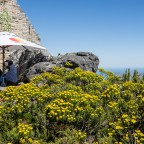 On top of Table Mountain: Shop Top and Restaurant
