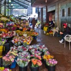 Adderley Street Flower Market