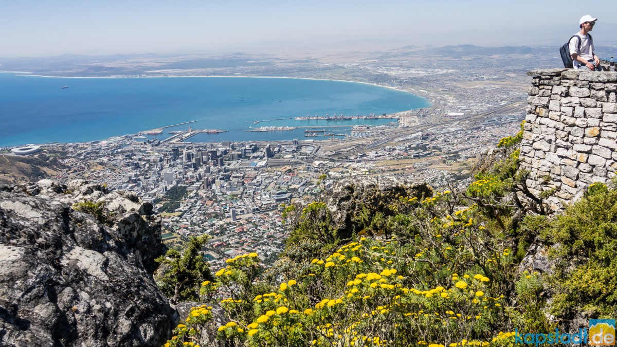 On top of Table Mountain: Cape Town City Bowl