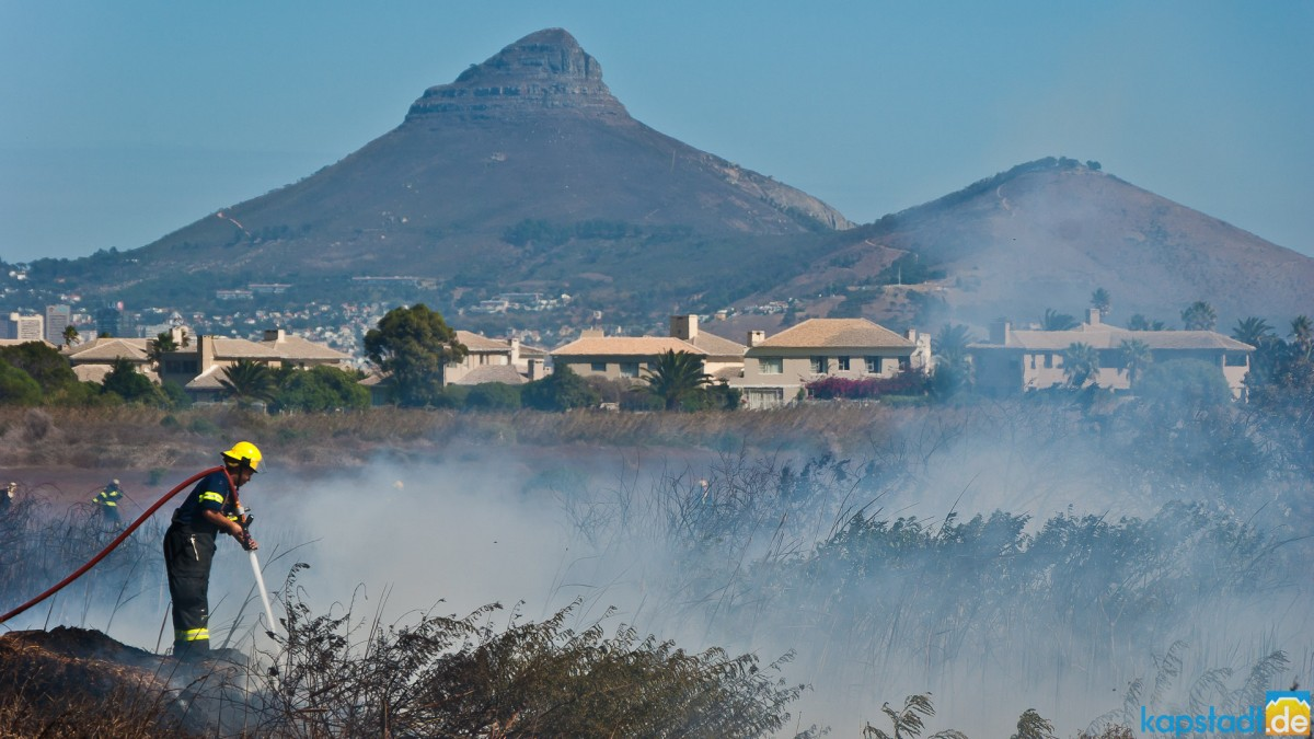 Field fire in Milnerton