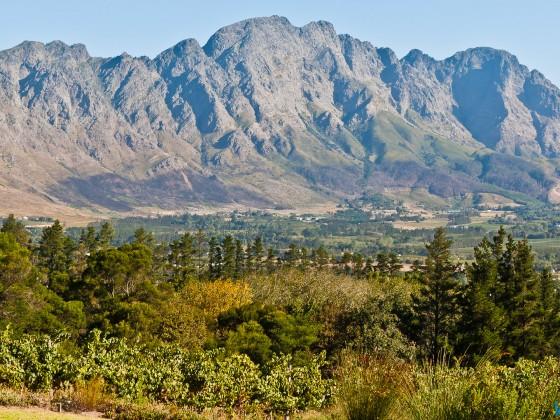 Winelands in Franschhoek