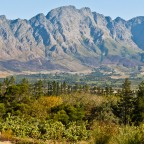 Winelands in Franschhoek