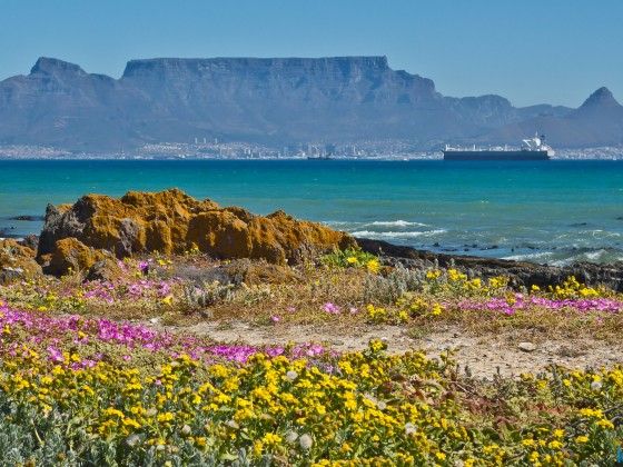 Table Mountain in spring