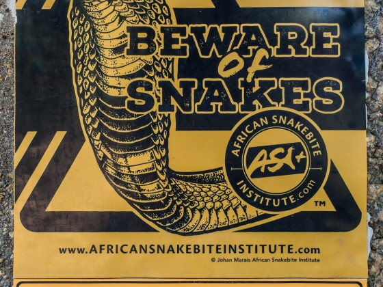 Beware of snakes at the Afrikaanse Taal Monument in Paarl