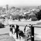 Pentz street, Bo-Kaap, 1960