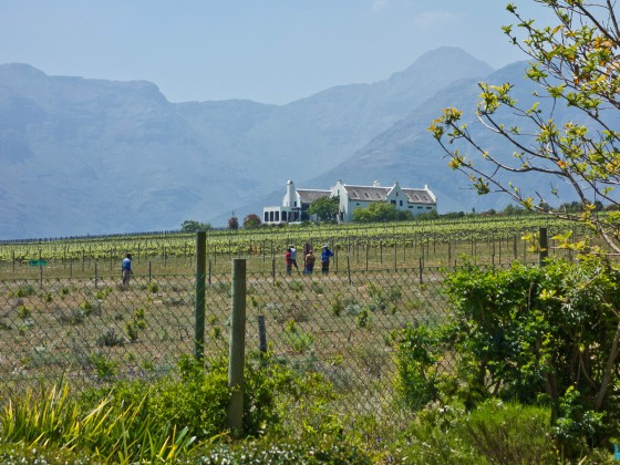 Eikendal Lodge in Stellenbosch (Winelands)