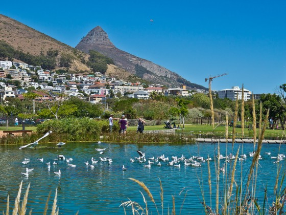 Impressions from Green Point Park