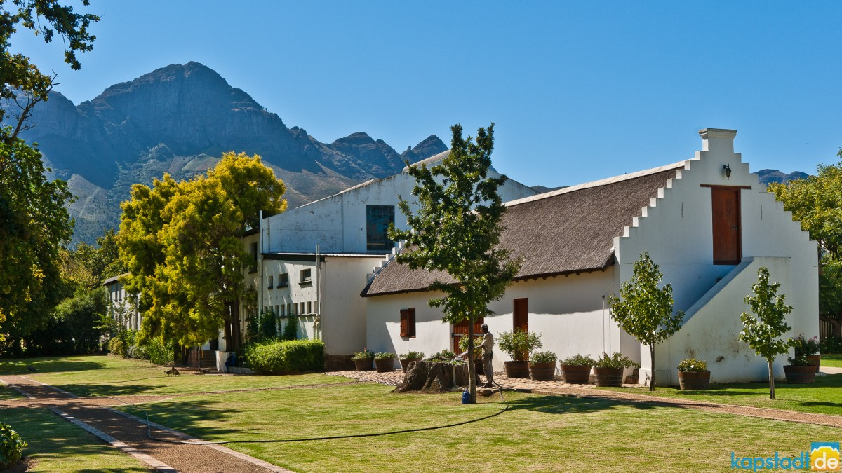 Wine Estate in the Winelands