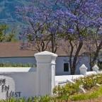 Vrede En Lust Wine Estate near Franschhoek