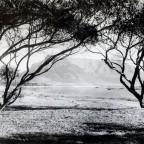Milnerton Lagoon circa 1902