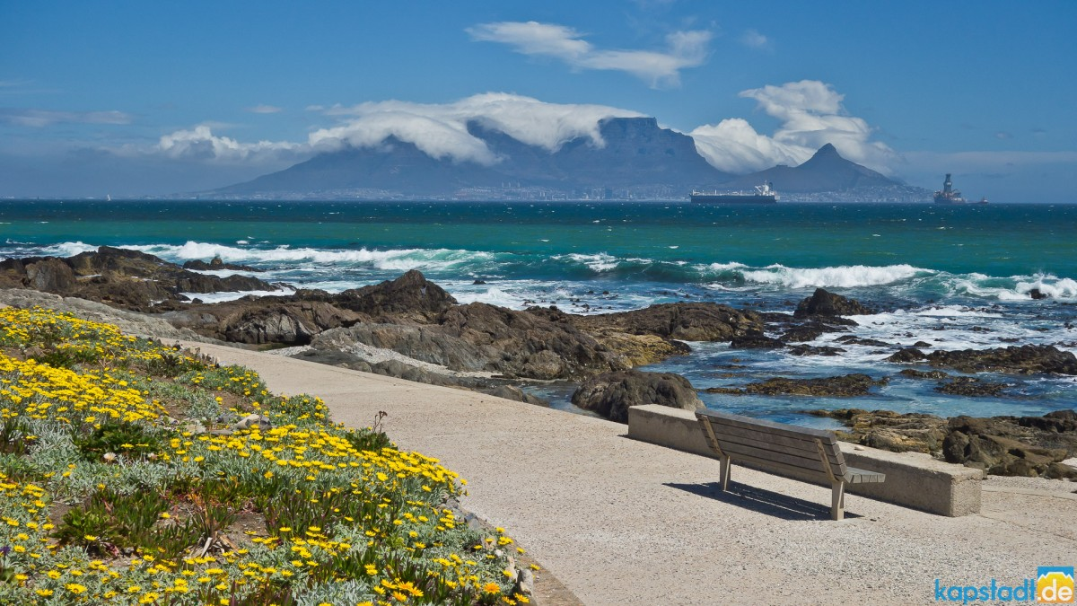 Favorite bench at Bloubergstrand in spring time (South Easter blowing)