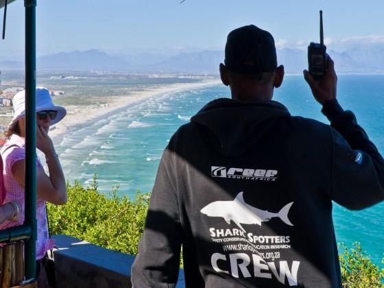 Shark spotters in Muizenberg