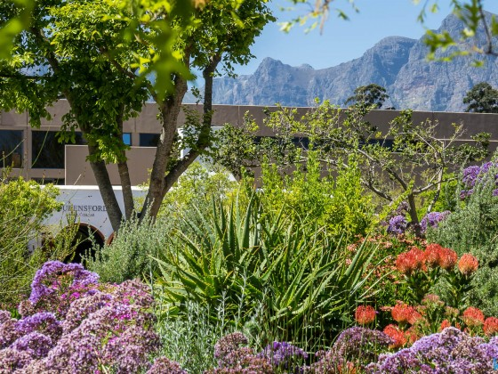 Lourensford Wine Estate in Somerset West