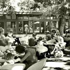 Tearoom in the Company Gardens, 1969