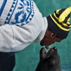 "Fisher ""feeding"" a seal at Hout Bay Harbour"