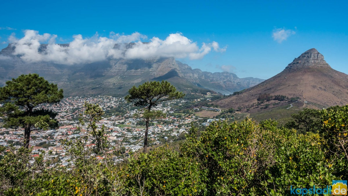 Table Mountain and Lions Head seen from Signal Hill