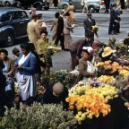Flower sellers, June 1946