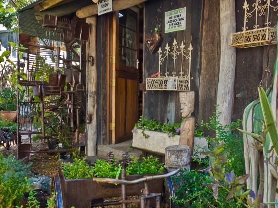 Plant nursery in Hout Bay