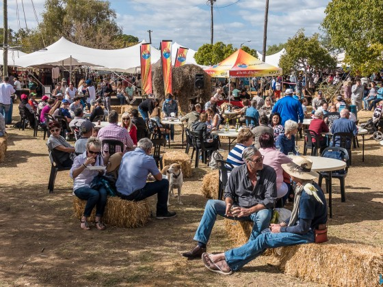 Riebeek Kasteel and Valley Olive Festival 2017