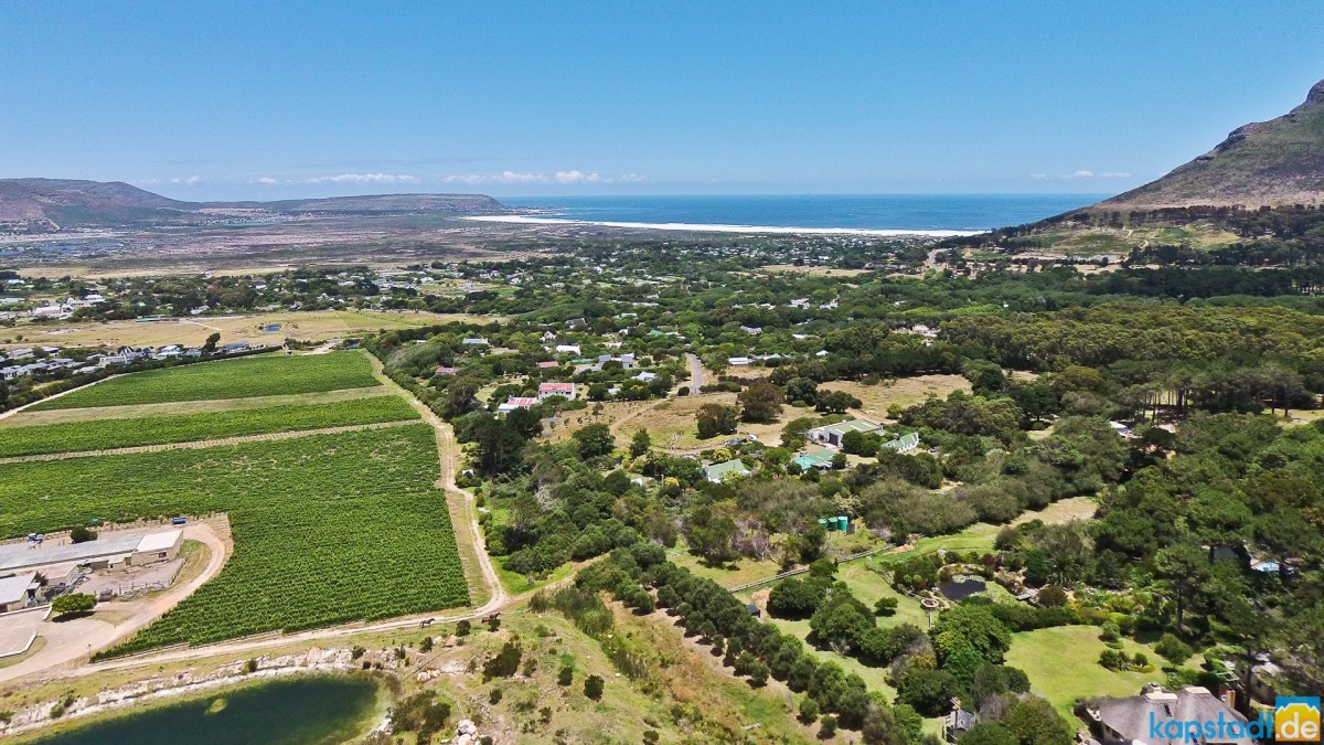 "Aerial image of ""Cape Point Vineyards"" with their restaurant in Noordhoek"