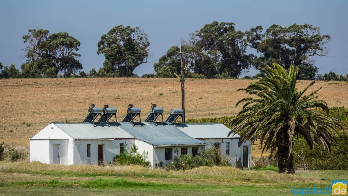 Meerendal Wine Estate near Durbanville - farmworkers homes