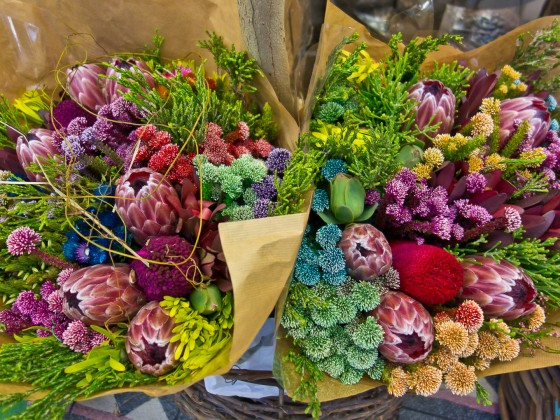 Local flowers at a flower shop at the V&A Waterfront