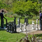 Playing chess in Company's Garden