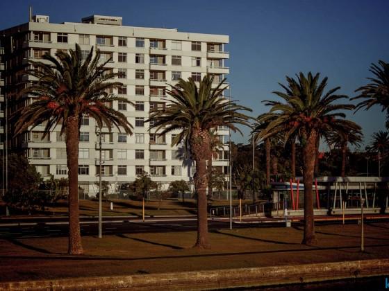 Palo Alto retro