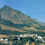 The South African Astronomical Observatory 1981