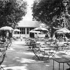 Gardens Tearoom 1951