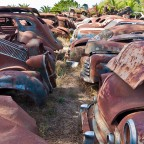 """Wijnland Auto Museum"" vintage cars and scrap near Stellenbosch"