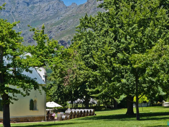 Dornier Wine Estate
