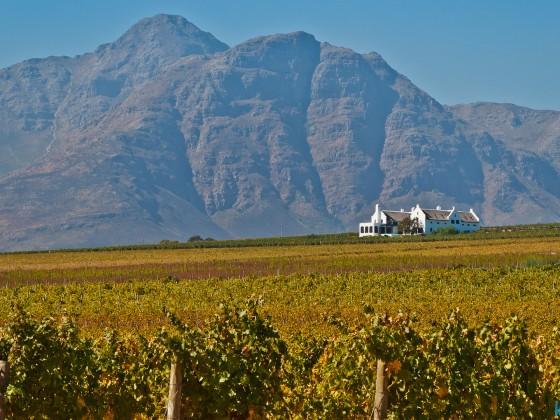 Images from Stellenbosch