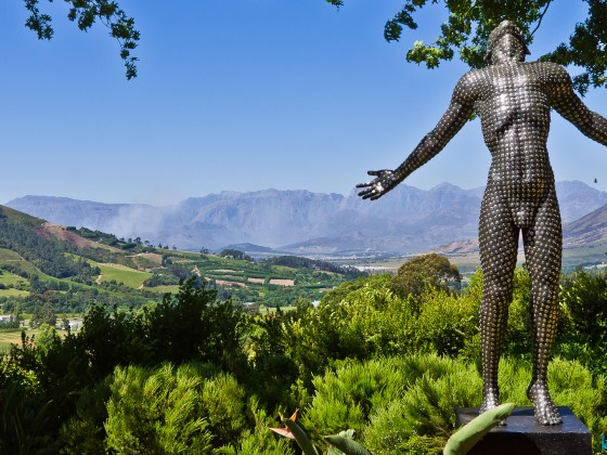 In the Winelands of Stellenbosch