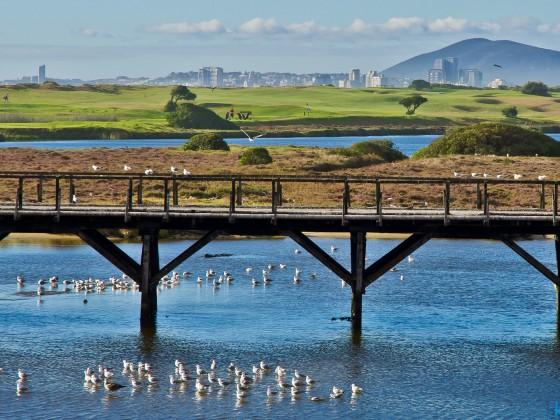 "Old wooden bridge of ""Woodbridge Island"""
