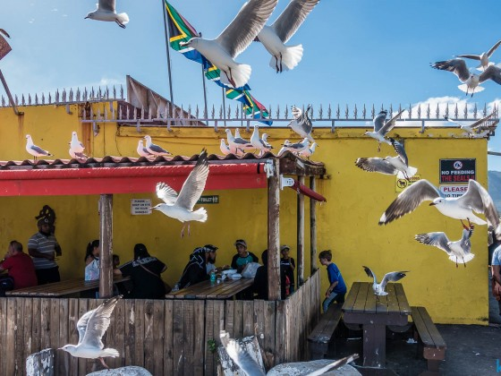 Fish on the Rocks Restaurant in Hout Bay