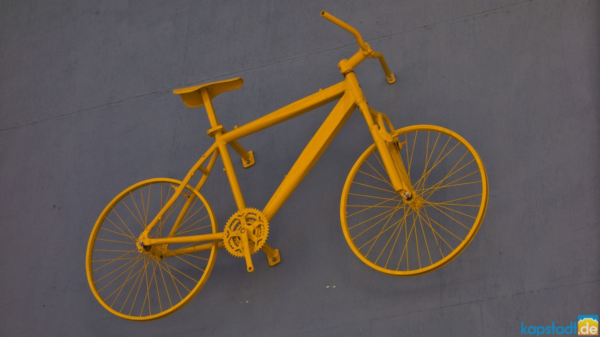 Decoration of a bicycle shop in Loop Street